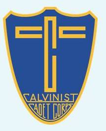 Cadet logo on web background